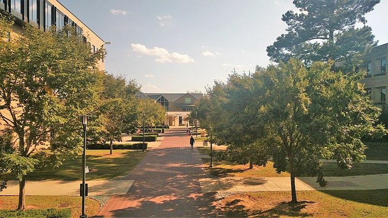 DMA @ Univ of Arkansas.